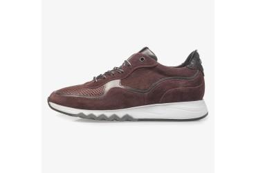 Floris Van Bommel Sneaker Rood